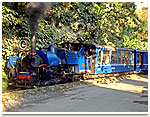 Toy Train in Kalimpong